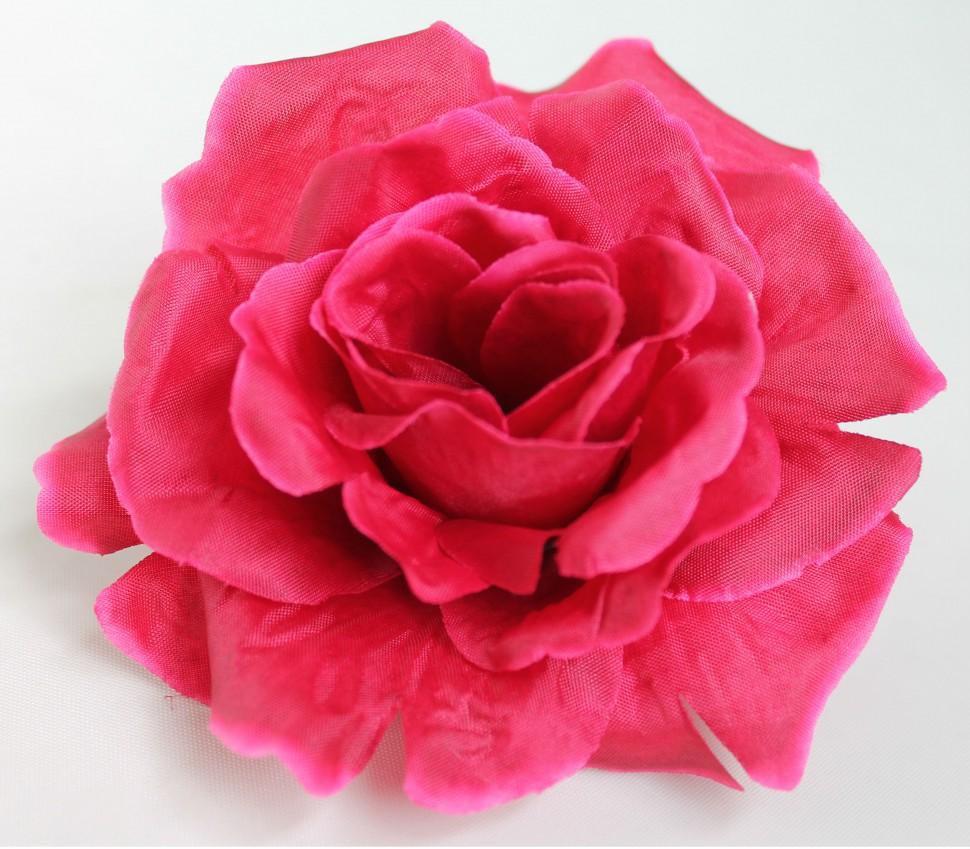 своей поздравление от донны розы них нет пятен